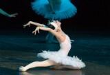 В Бресте покажут шедевры оперы и балета