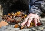 Чёрные копатели янтаря орудуют в Брестской области