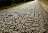 Брестский ДЭП занимается извлечением «трилинки» из дорожного основания вручную