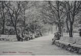 Знаменитый Городской сад реанимируют в Бресте