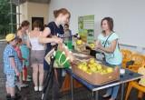 В Брестском Парке культуры и отдыха прошла акция по обмену макулатуры и батареек на яблоки