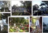 В Бресте прошел молочный фестиваль «Облака свежего молока»