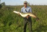 В Беловежской пуще брестчанином была поймана 15-килограммовая щука