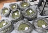 В Брестской области задержан наркодилер