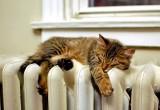 Включать отопление в Брестской области планируют с 7 октября