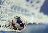 РФ и РБ подадут общую заявку на организацию европейского чемпионата по гандболу