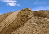 """В Бресте процветает нелегальная добыча и продажа песка. Кто остановит """"чёрных копателей""""?"""