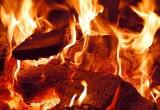 В Бресте спасатели вынесли из горящей квартиры двух человек