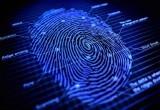 Биометрические паспорта появятся в Беларуси в конце 2018 года