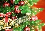 В Брестском городском парке открылась усадьба Деда Мороза