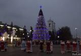 В каком городе установили лучшую новогоднюю ёлку?