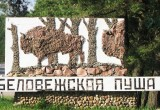 Беловежскую пущу включили в топ-25 достопримечательностей Восточной Европы