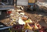 В России уничтожили 76 тонн продуктов, прибывших из Беларуси