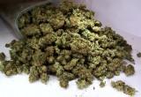 У жителя Брестского района обнаружено 2 килограмма марихуаны