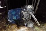 В Брестской области водитель BMW врезался в дерево и перевернулся