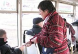 Минобразования показало новую справку для бесплатного проезда школьников