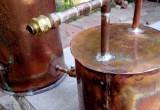 В Беловежской пуще обнаружили мини-завод по производству самогона