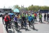 «Без мотора»: в велопараде в Бресте приняли участие более 700 человек