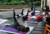 17 июня в Бресте праздновали Международный день йоги