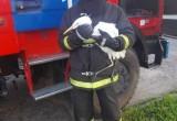 В Брестской области сотрудники МЧС спасли запутавшуюся в водорослях цаплю со сломанной ногой