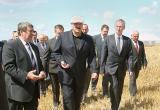 Лукашенко запретил чиновникам уходить в отпуска