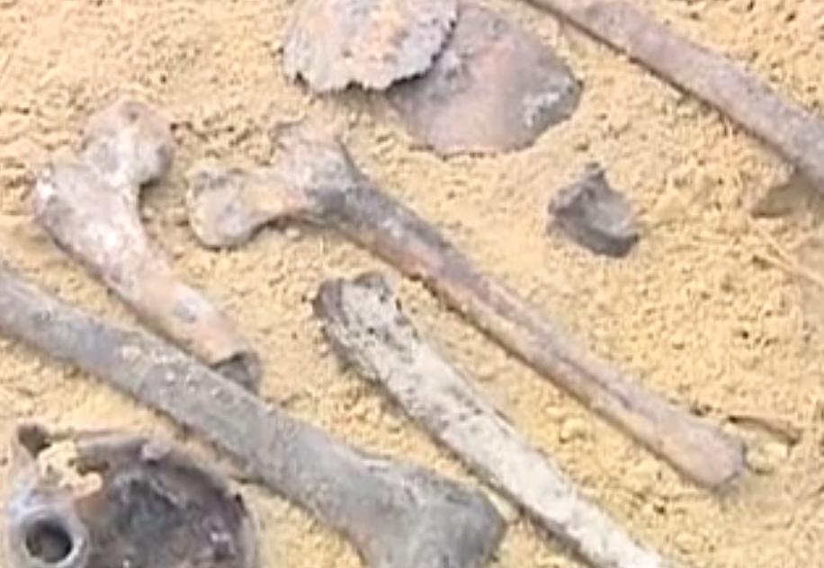 В районе Брестской крепости нашли древнее захоронение