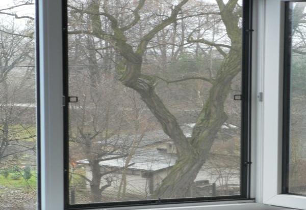 В Бресте на Машерова с окна 5-го этажа выпал первоклассник