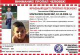 Максим Мархалюк пропал в Беловежской пуще ровно месяц назад. Что известно на данный момент?