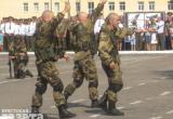 Военная комендатура отказалась возбуждать уголовное дело по поводу того, что десантники в Бресте разрывали на глазах у зрителей ужей и жаб