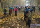 В Брестском Городском саду многодетные семьи высадили аллею деревьев