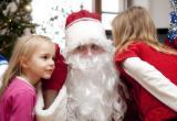 Во сколько в Бресте обходится подработка Дедом Морозом?