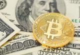 Крипто валюты. Число желающих заработать на обмене растет