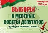 С 13 февраля в Беларуси можно проголосовать досрочно на местных выборах