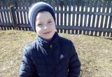 В Беларуси уже 5 месяцев продолжаются поиски Максима Мархалюка. Что известно на данный момент?