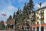 В Бресте на площади Ленина весной заменят ели