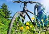 Катание на велосипеде продлит молодость