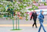 4 апреля в Бресте был побит температурный рекорд