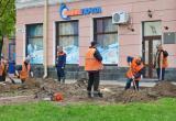 Молодые ели на площади Ленина можно будет увидеть уже 1 мая