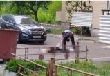 Происшествия в Бресте 9 мая: разбившаяся насмерть школьница и сгоревший дом