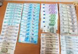 Брестские таможенники уже в 25-й раз с начала года пресекли попытку ввоза валюты без декларирования