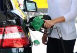 Белнефтехим: автотопливо в Беларуси подорожает на 24 процента