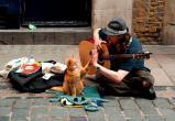 У уличных музыкантов Лондона появились терминалы