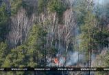 Как поступить, если Вы стали очевидцем лесного пожара? Советы даёт МЧС