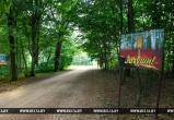 Будни лесной охраны в Брестской области. Как справляются специалисты с угрозой лесных пожаров?