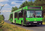 В Бресте закрылось несколько автобусных маршрутов