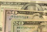 В Беларуси сократилось число поддельных денег