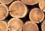 Мужчина помогал при распилке древесины, упал, и был насмерть придавлен бревном