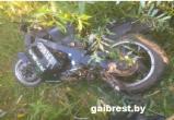 В Пинском районе в результате опрокидывания мотоцикла погиб пассажир перевозившийся без мотошлема