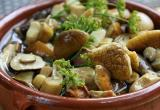 Заготавливаем грибы на зиму