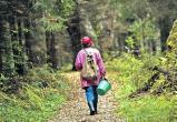 Как нашли заблудившуюся в лесу пенсионерку